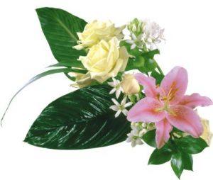 flowers 163